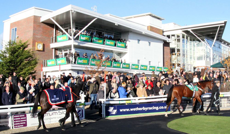 wetherby races2
